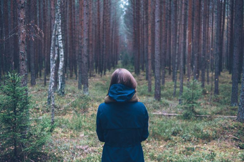Bäume pflanzen für den Klimaschutz