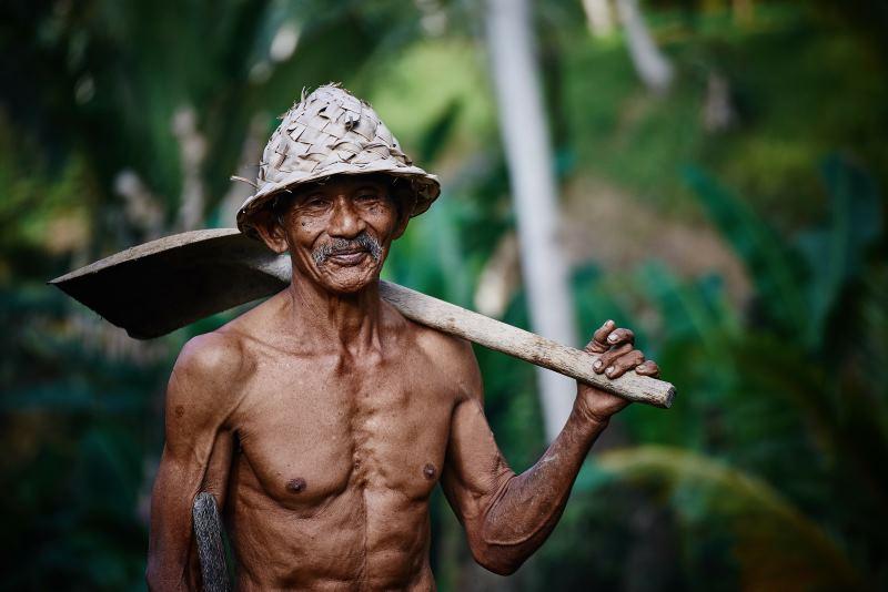 Linguistische Kokosnusskuriositäten – über Mukomuko und Motomoto und weitere sprachliche Überraschungen