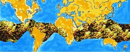 Kokosnuss Weltkarte