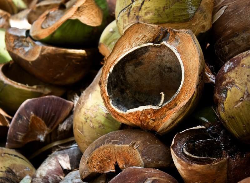 Kokosfasern zu Seilen – die Herstellung