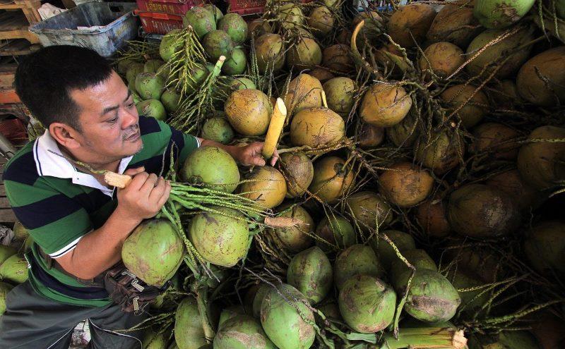 Kokosblütenzucker und der glykämische Index