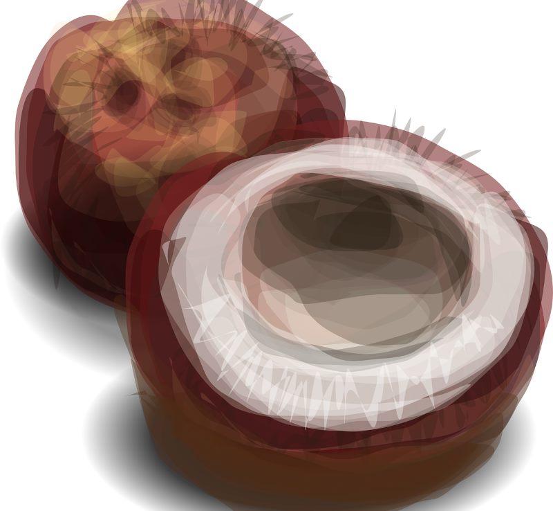 Kokosöl für Rohkostfreunde