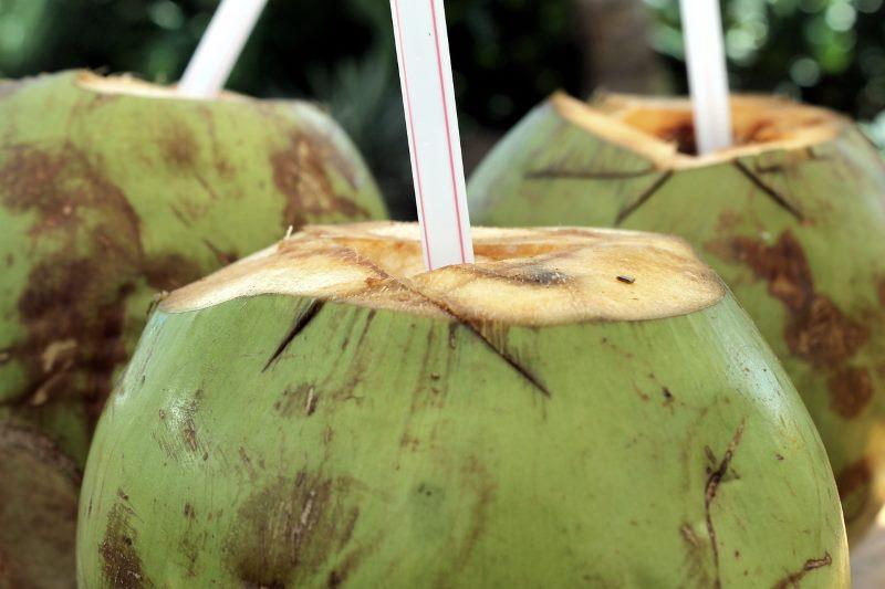 Kohlenhydrate im Kokoswasser
