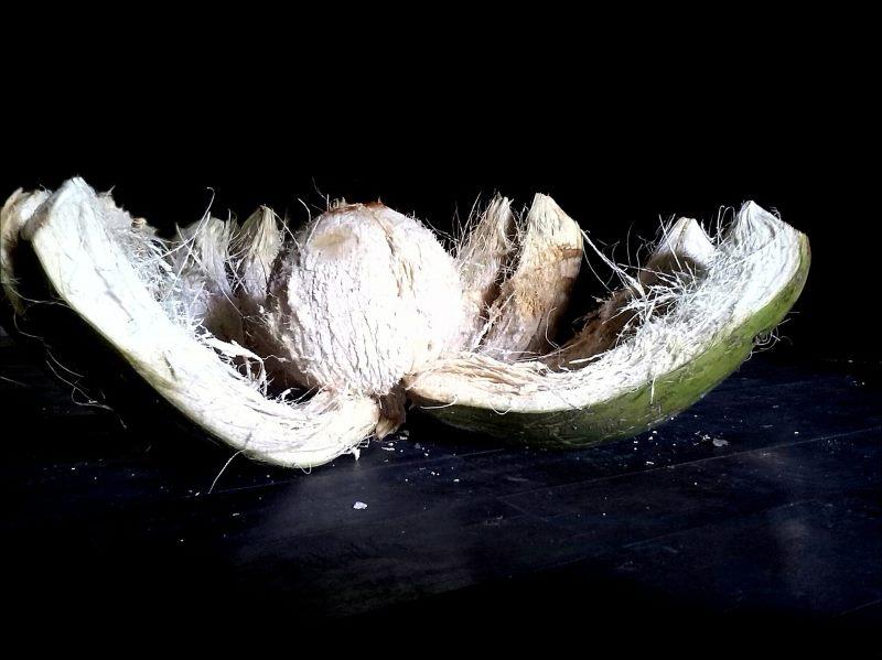 Herstellung von Pagode Light oder Nam Hom Kokosnüssen