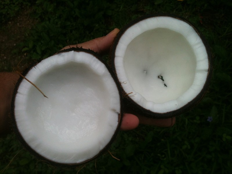 Ketogene Ernährung mit Kokosöl