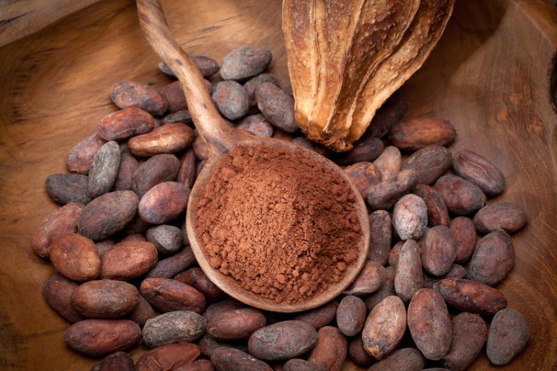 Selbstgemachte vegane Schokolade mit Kokosblütenzucker