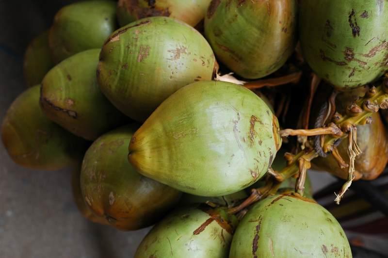 Kokosnussprodukte unterstützen Clean Eating-Trend