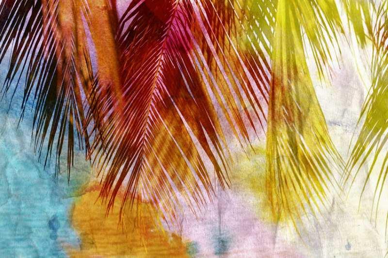 Kokosnuss und Allergien