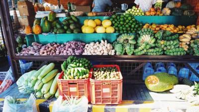 Raw Food oder die Wiederbelebung der Rohkostküche