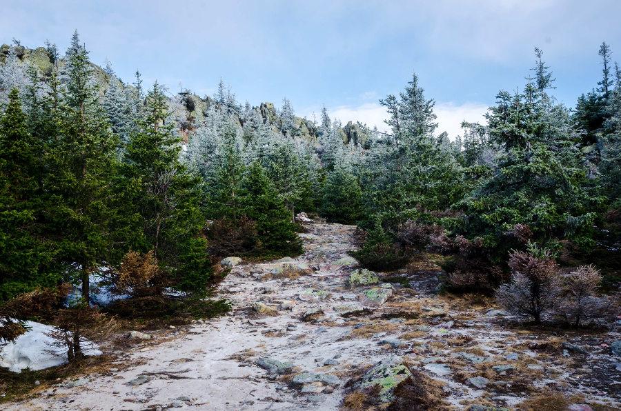 Was verstehen wir unter Nachhaltigkeit zur Weihnachtszeit?
