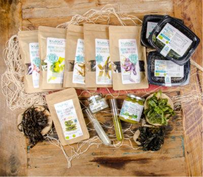 Algen – Lebensmittel der Zukunft